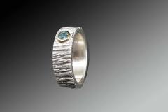 Ring-ferig-scaled